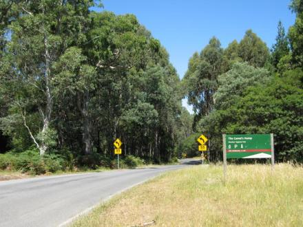 view along the road to The Cross, Mt Macedon